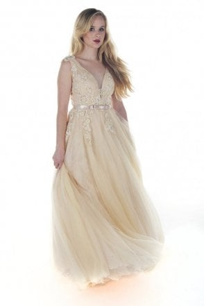 Beige 3265 embroidered net overlay dress