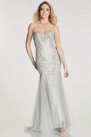 Silver Fantasia mermaid style long dress